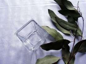 coupe-senteur-eucalyptus. les IDÉes d'ÉDIth