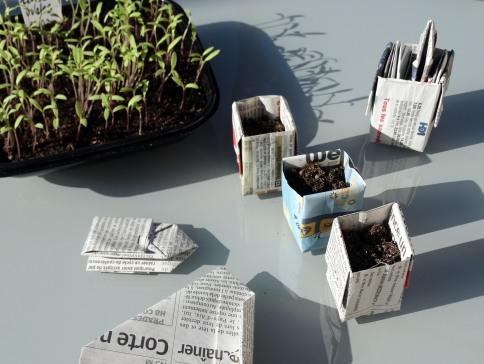 DIY-potager,pots-en-papier.Les-IDÉes-d'ÉDIth.com4