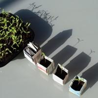DIY au potager : godets en papier