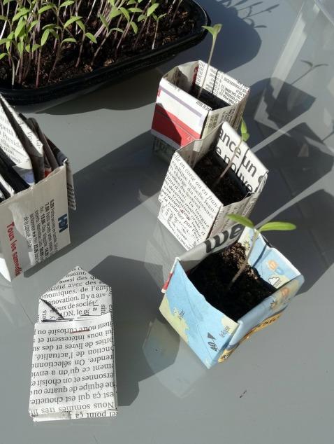 DIY-potager,pots-en-papier.Les-IDÉes-d'ÉDIth.com7